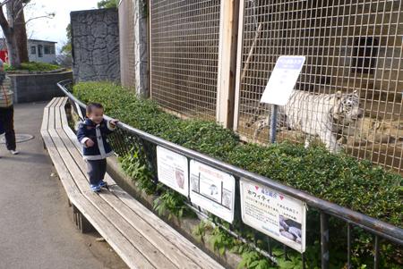 動物園01.JPG