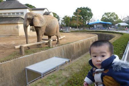 動物園02.JPG