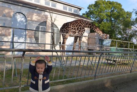 動物園03.JPG